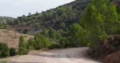 Ruta de la Maratón BTT de El Burgo 2011