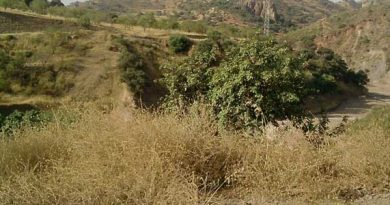 Ruta BTT Sierra Colmenarejo Arroyo de los Olivos Cupiana